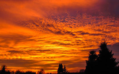 Fire in the Sky by Floriarty