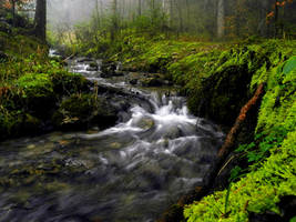 Magical Stream by Floriarty