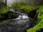 Magical Stream