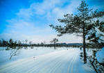 Wintry by Floriarty
