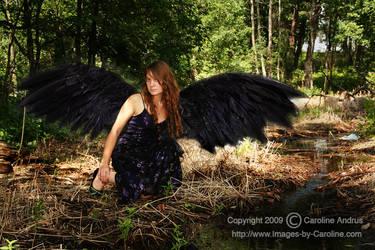 Dark Fey by faerietears32