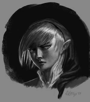 Link portrait speedy