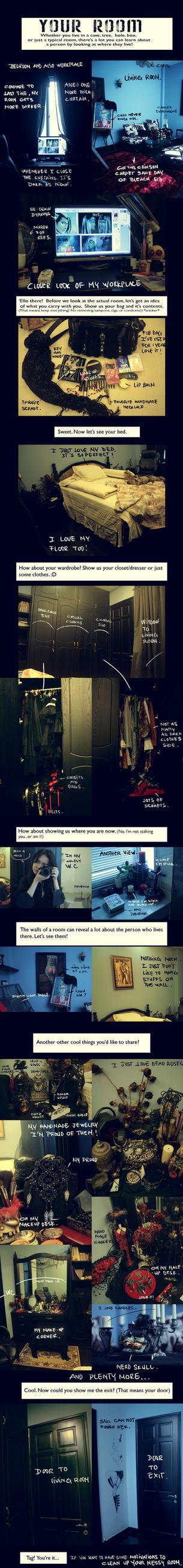 My Room Meme 2012 by NanFe