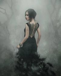 Raven Land by NanFe