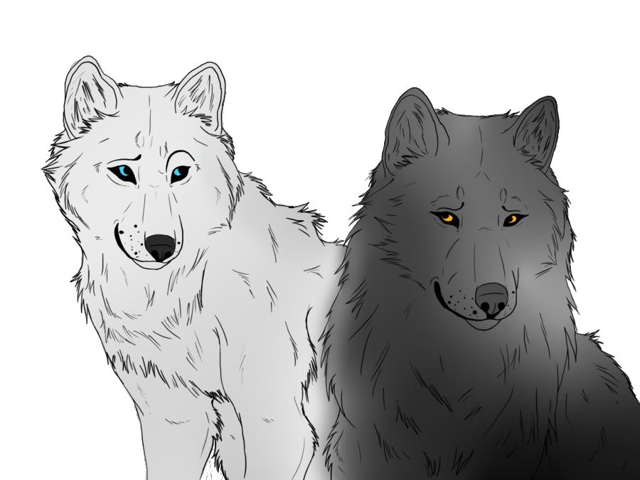 Wolf Lineart : Wolf lineart read description by leopardxcrow dzembezcukru on