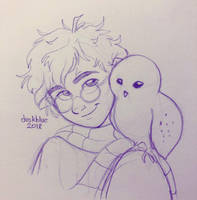 Harry and Hedwig by irishgirl982