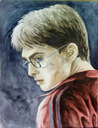 Harry Potter by Pterona