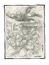 TMNT #1 Portfolio Plate by Kevineastman
