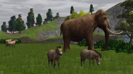 Wildlife Park 2 - Peaceful grazing