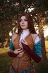 The Witcher 3 Lore Triss Mod