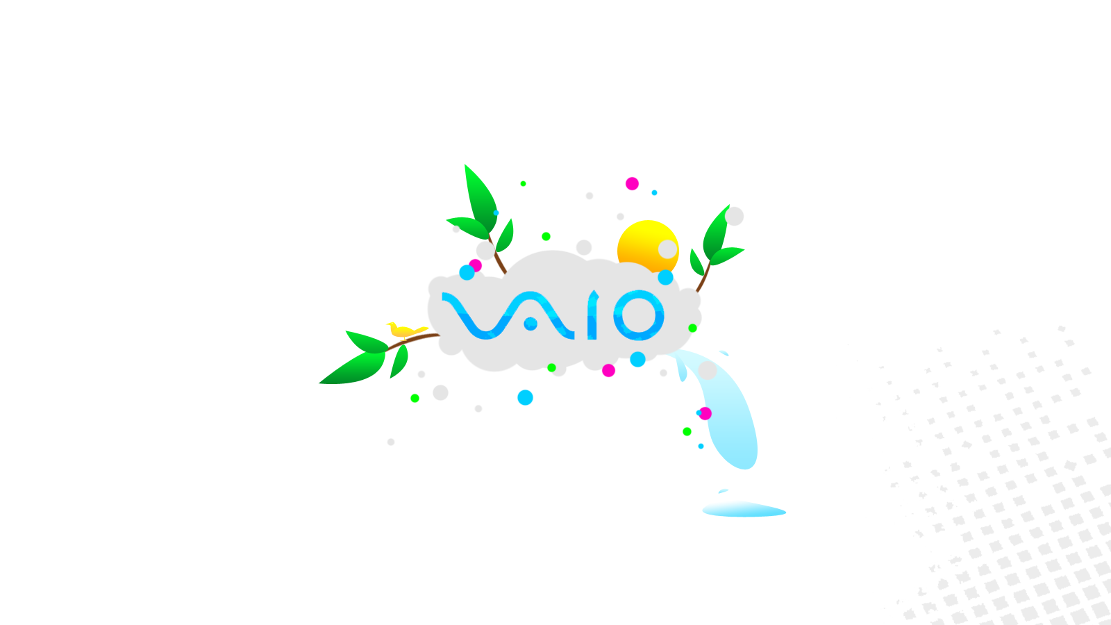 how to change screen resolution sony vaio