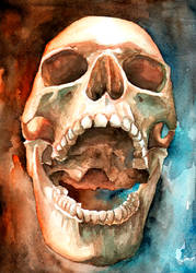 skull watercolor painting #7 by Giulianobuffi