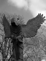 Angel of Death by xartez
