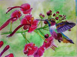 Humming Bird and Flowers (Finished)