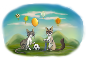 Felino estado gaseoso by Chess-Kitten