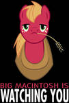 Big Macintosh is Watching You