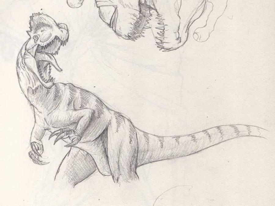 Dilophosaurus Drawing Dilophosaurus iv by mingottDilophosaurus Drawing