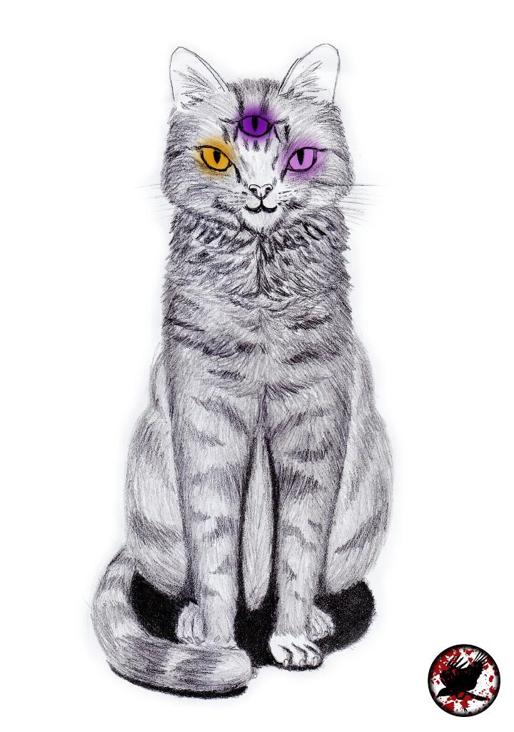 Gato Tres Ojos Pq