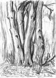 Tree 2010-04-01