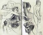 Sketching nipples
