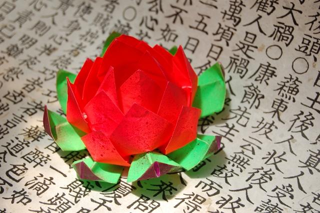 LotusutoL by mangovioleta