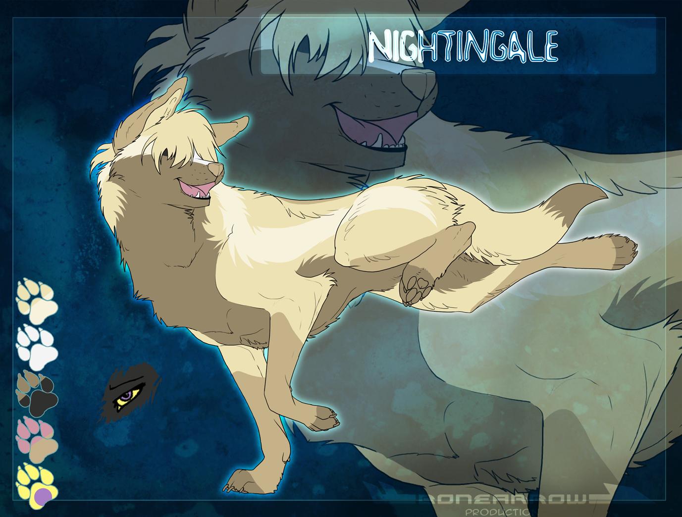 dddsssssss Soh__nightingale_cs_by_icekrystal-d3hyixl