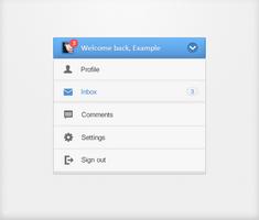 User account panel