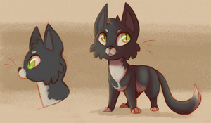 Kitten Curmudgeons