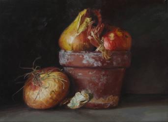 Onions by bobtheraccoon