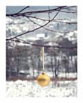 Christmas time by nieTomek