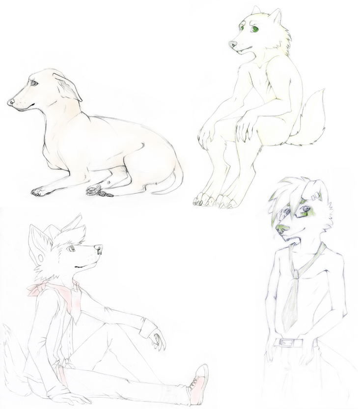 Free sketches by geheichous