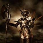The Armed Meiden
