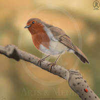 Mum's Robin That Girl Killed by JT-ArtsAndMedia