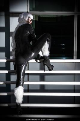 Comikaze 2013 - Black Cat (Escaping)