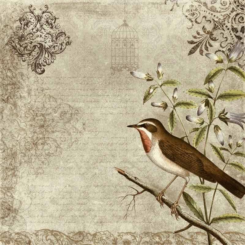 bird vintage texture by Etoile-du-nord