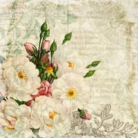 floral texture by Etoile-du-nord