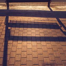 Gridded Shadows