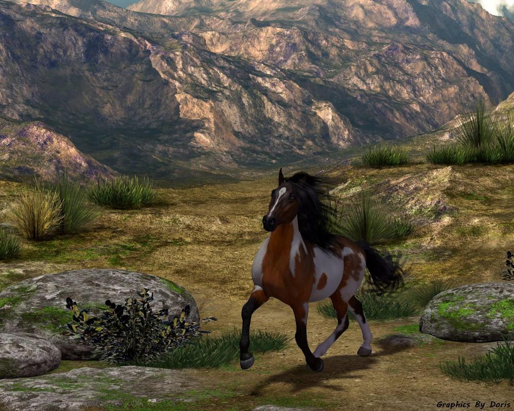 Wild Horse Canyon by merrygrannyde