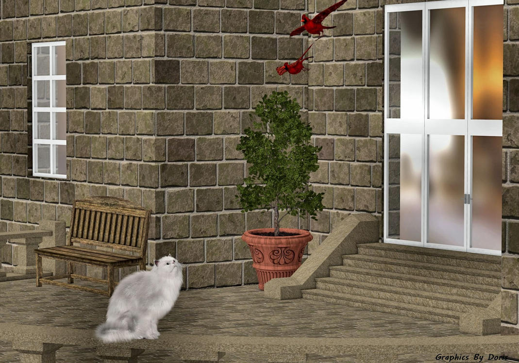 Fluffy's Terrace Adventure by merrygrannyde