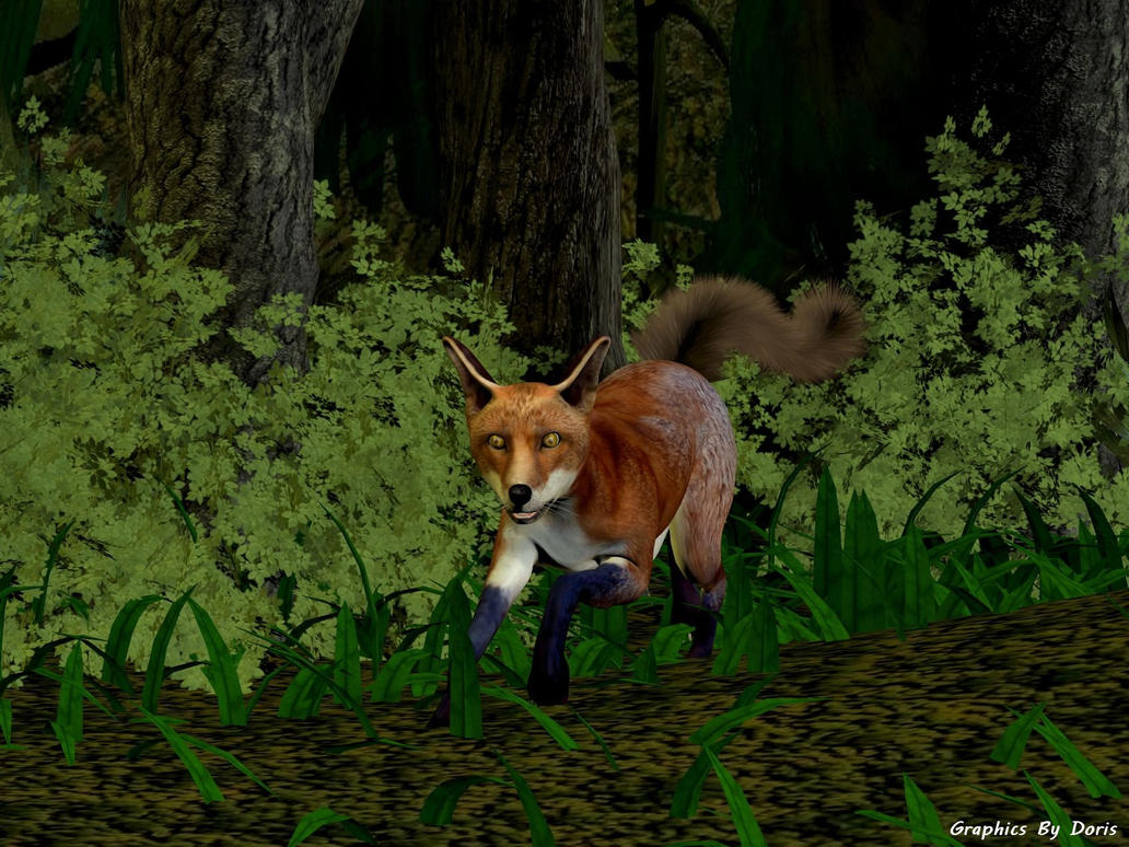 A Fox In The Woods by merrygrannyde