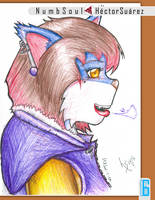 Chilled wolfie by Numbsoul