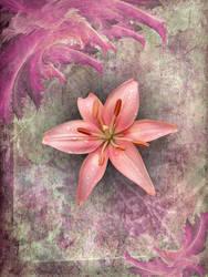 Flower of Joy by GreenEyezz