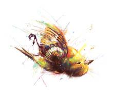 dead bird by MarinaVeselinovic