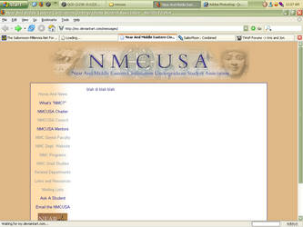 NMCUSA website by saine