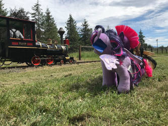 Ponies at Remlinger Farms  by TaionaFan369