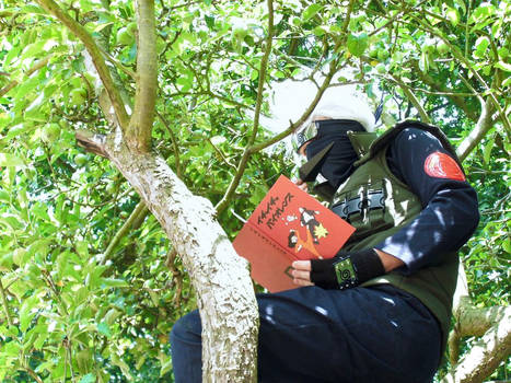 Ninja Hidden In The Leaves 2