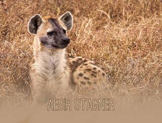 Aesir Stagner by FoulGuardian