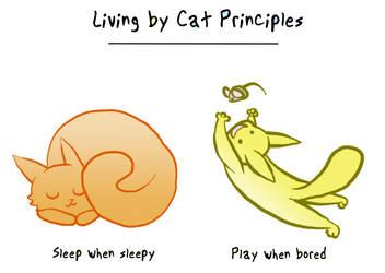 Cat Principles Page 2 by Allishinca