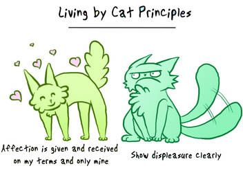 Cat Principles Page 3 by Allishinca