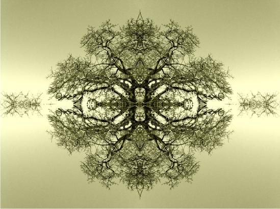 Tree Lace Sanctuary by Gorqon